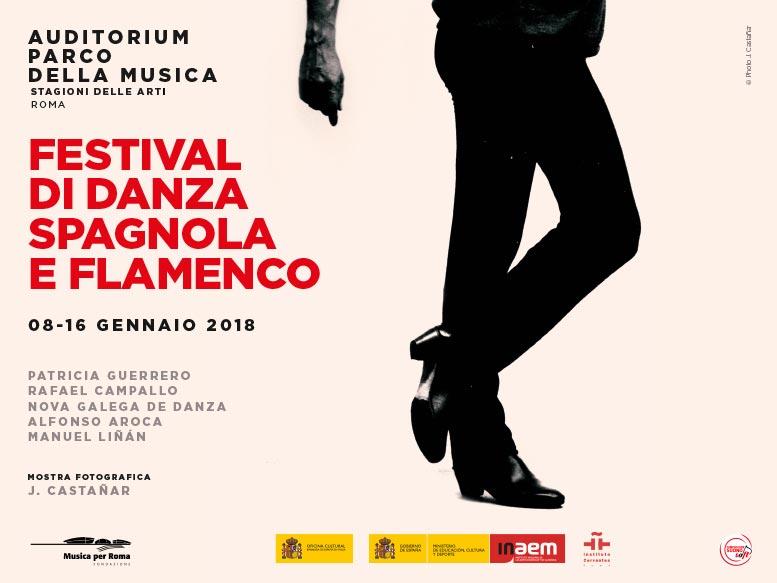 DSS_777x583_flamenco