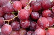 uva rossa-2